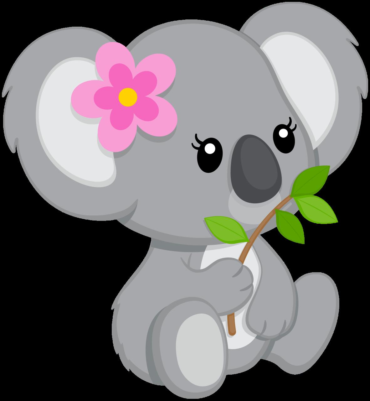 medium resolution of koala bear