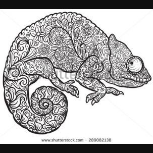 Zentangle Chameleon Pesquisa Google Zentangle Mandala Malvorlagen Ausmalen