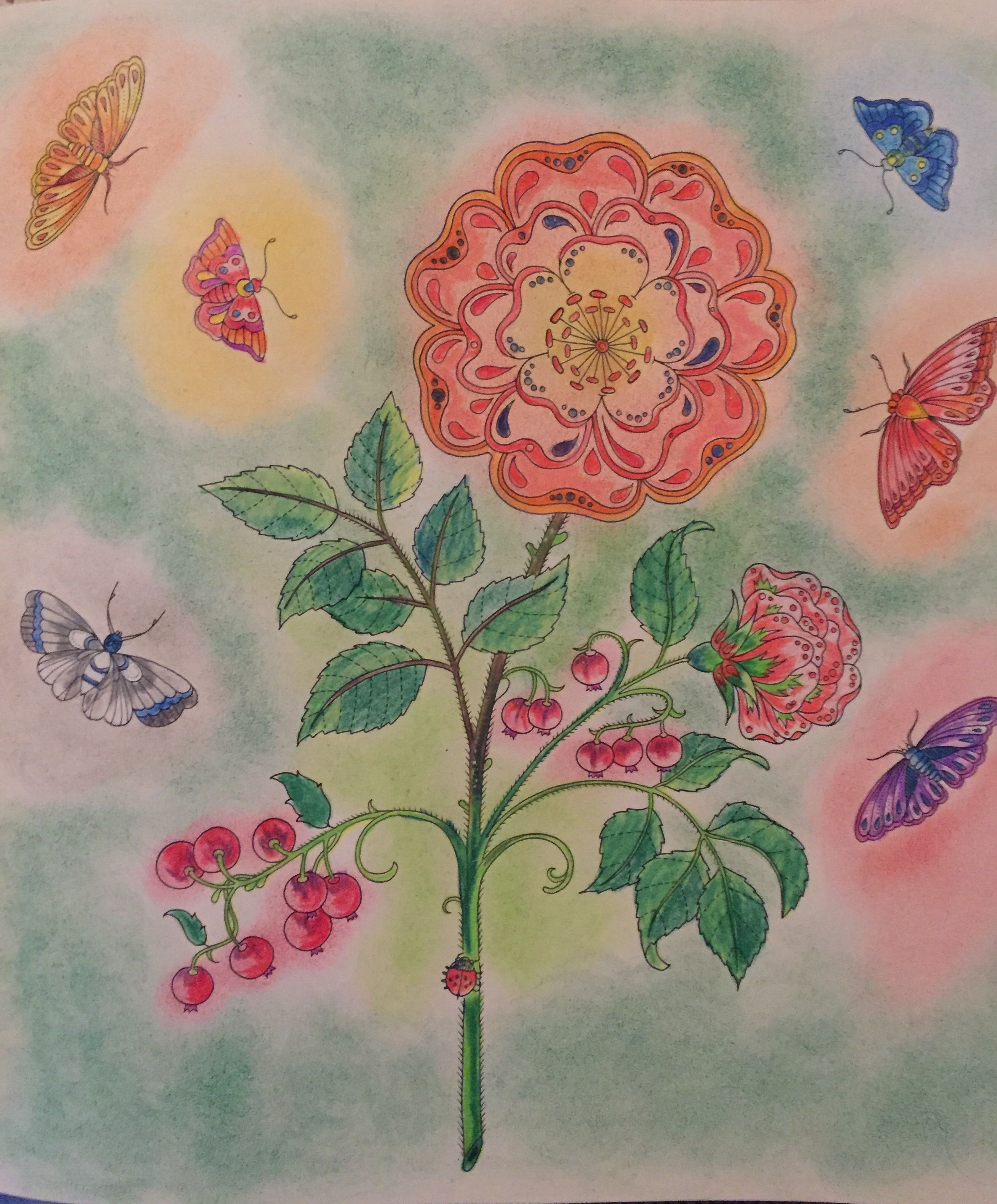 Inspirational Coloring Pages By Leticia Tomita