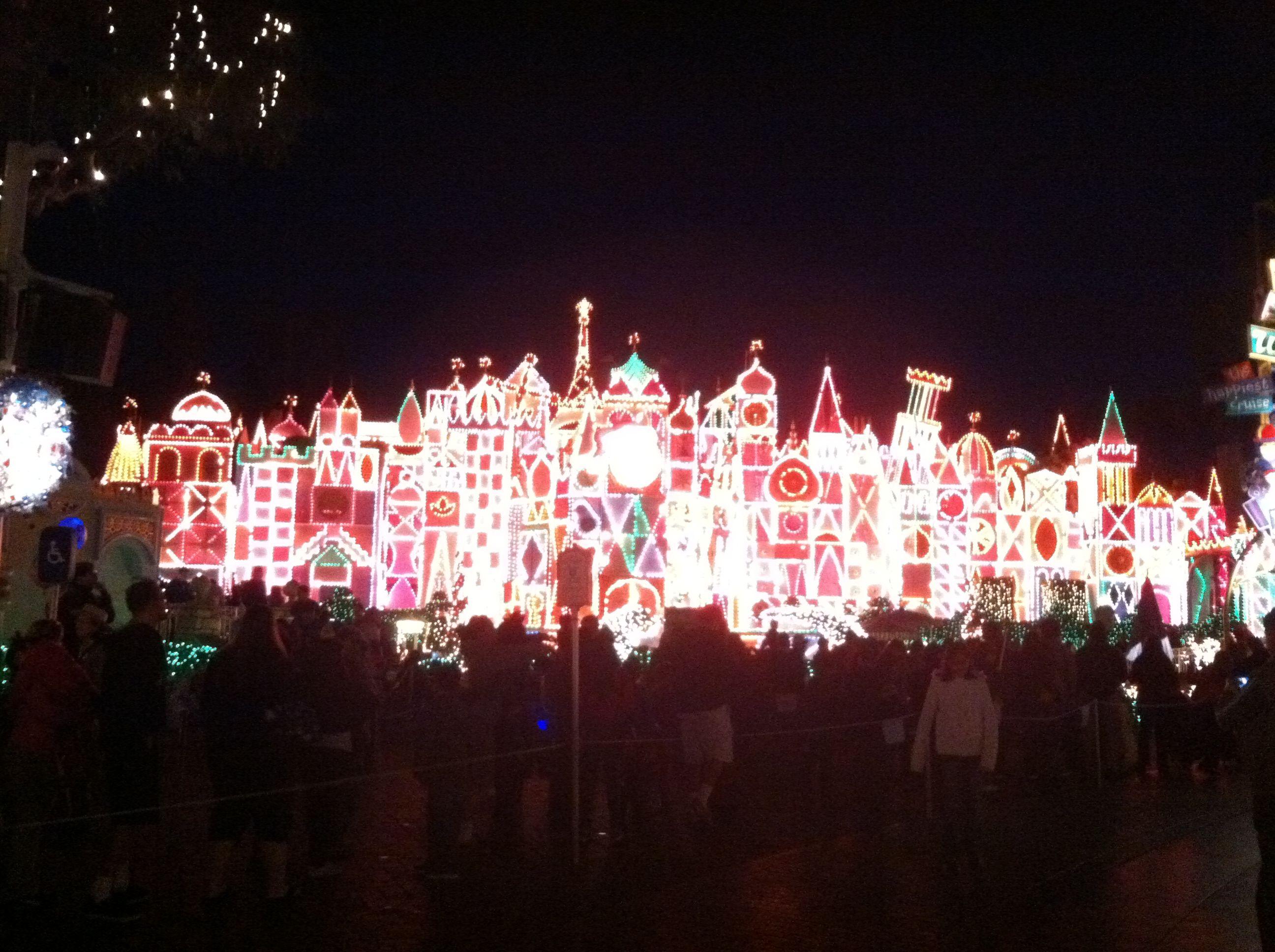 Disneyland:  It's a small world
