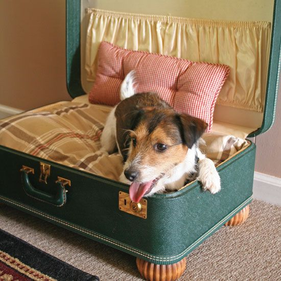 Make a simple suitcase pet bed do it yourself projects cappers make a simple suitcase pet bed do it yourself projects cappers farmer solutioingenieria Images
