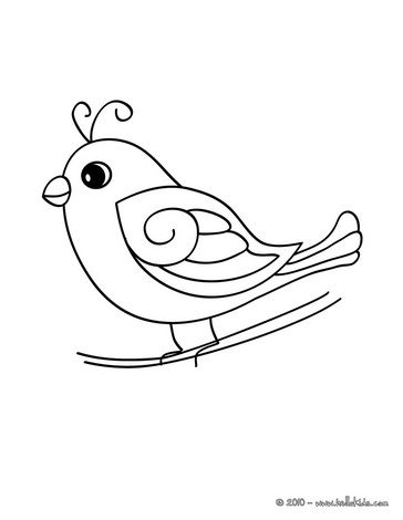 Cute Bird Coloring Page Bird Coloring Pages Bird Drawings