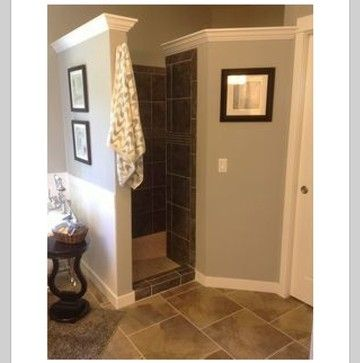 Walk In Shower, No Door :)   Like This Idea. Just Be Sure To Have A Light  For Inside The Shower.