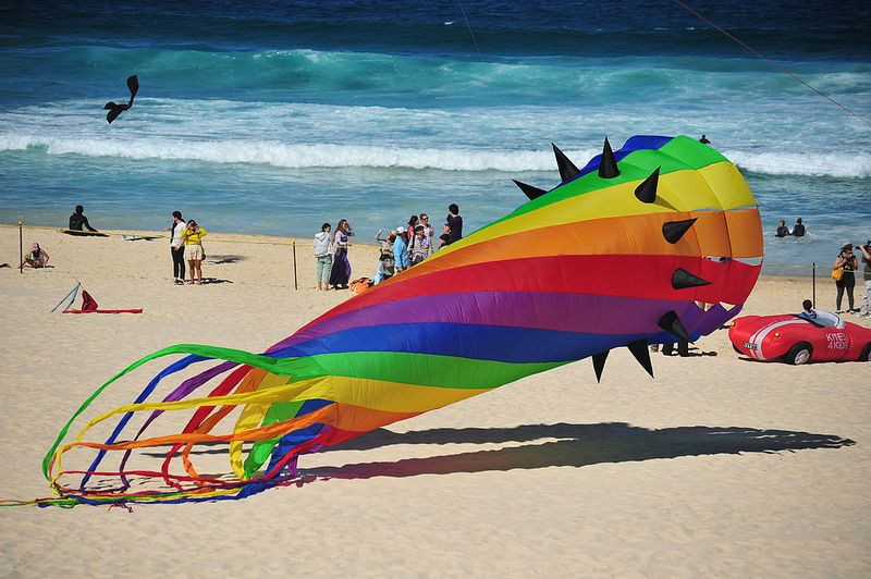 The Amazing #Kites at the Bondi Beach #Festival of the Winds