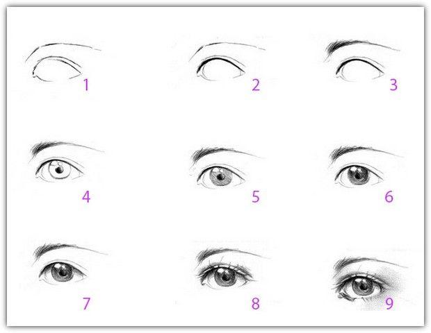 Схема нарисовать глаз