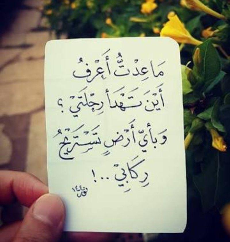 ما عدت أعرف اين تهدأ رحلتي وبأي أرض تستريح ركابي Beautiful Arabic Words Words Quotes Islamic Quotes