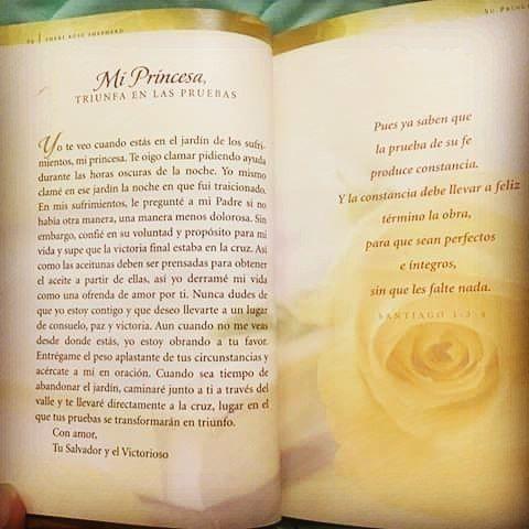Cartadeamor Libro De Sheryrose Cartas De Amor De Tu Rey Lecturadeldia Cartas De Amor Frases De Amor Para El Novio Princesa De Dios
