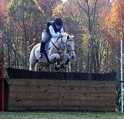 My dream is to one day compete in cross country horse jumping events. Its so beautiful to watch these riders gallop through open pastures and right over huge jumps. Its almost like the world goes in slow motion every time the horse jumps.