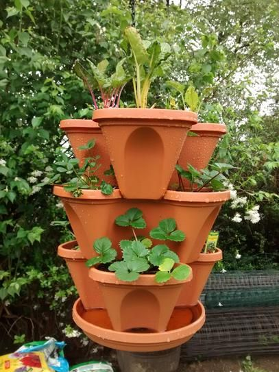 Nancy Jane Vertical Gardening Self Watering 12 In Stacking Planters In Terra Cotta 3 Pack Hanging Set P1360 The Home Depot Vertical Garden Planters Self Watering