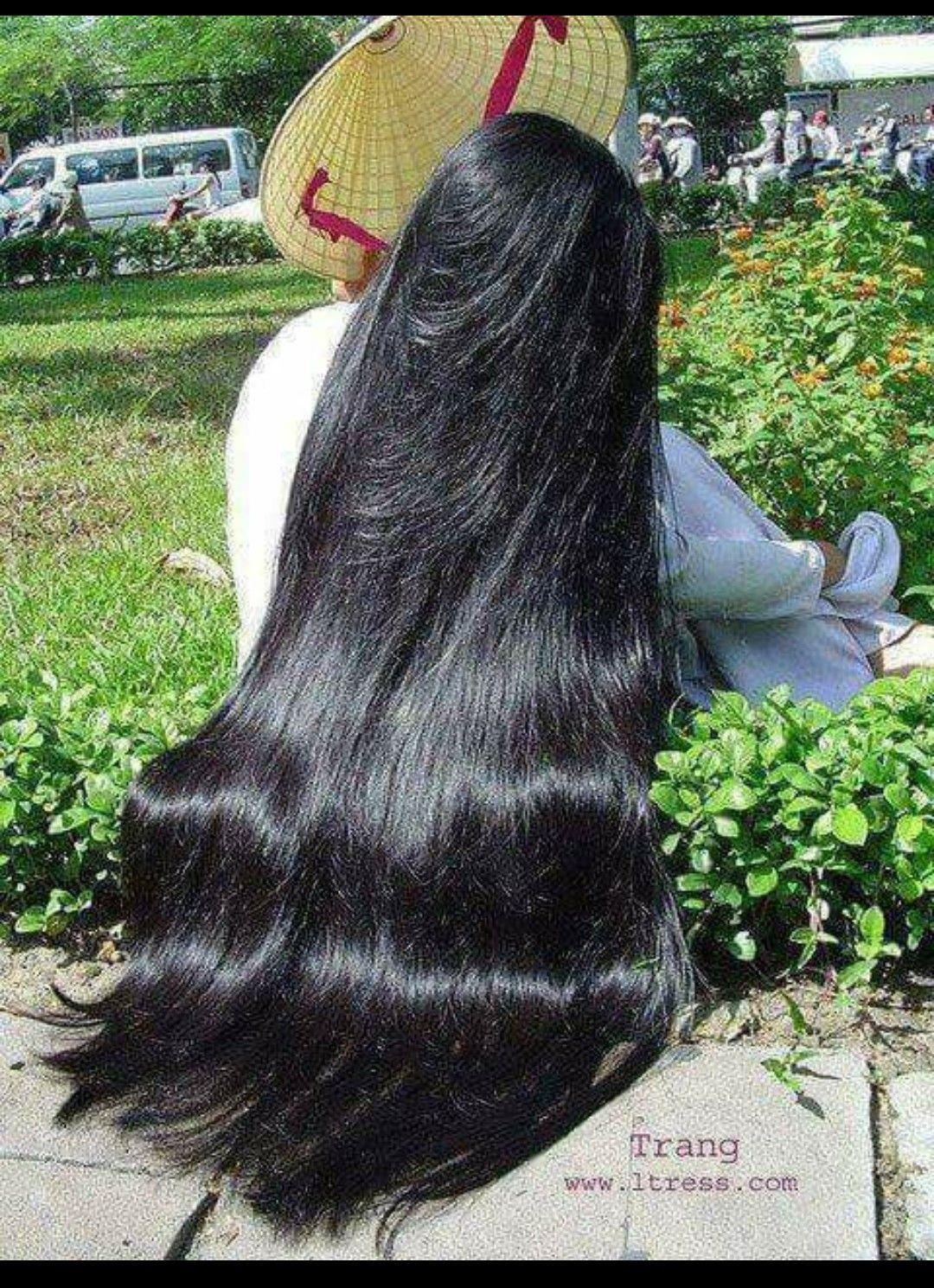 Black Stallion Shiny Long Natural Hair Long Hair Styles Long Shiny Hair Thick Hair Styles