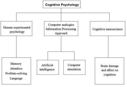Cognitive Psychology Sub Topics Psychology Cognitive Science