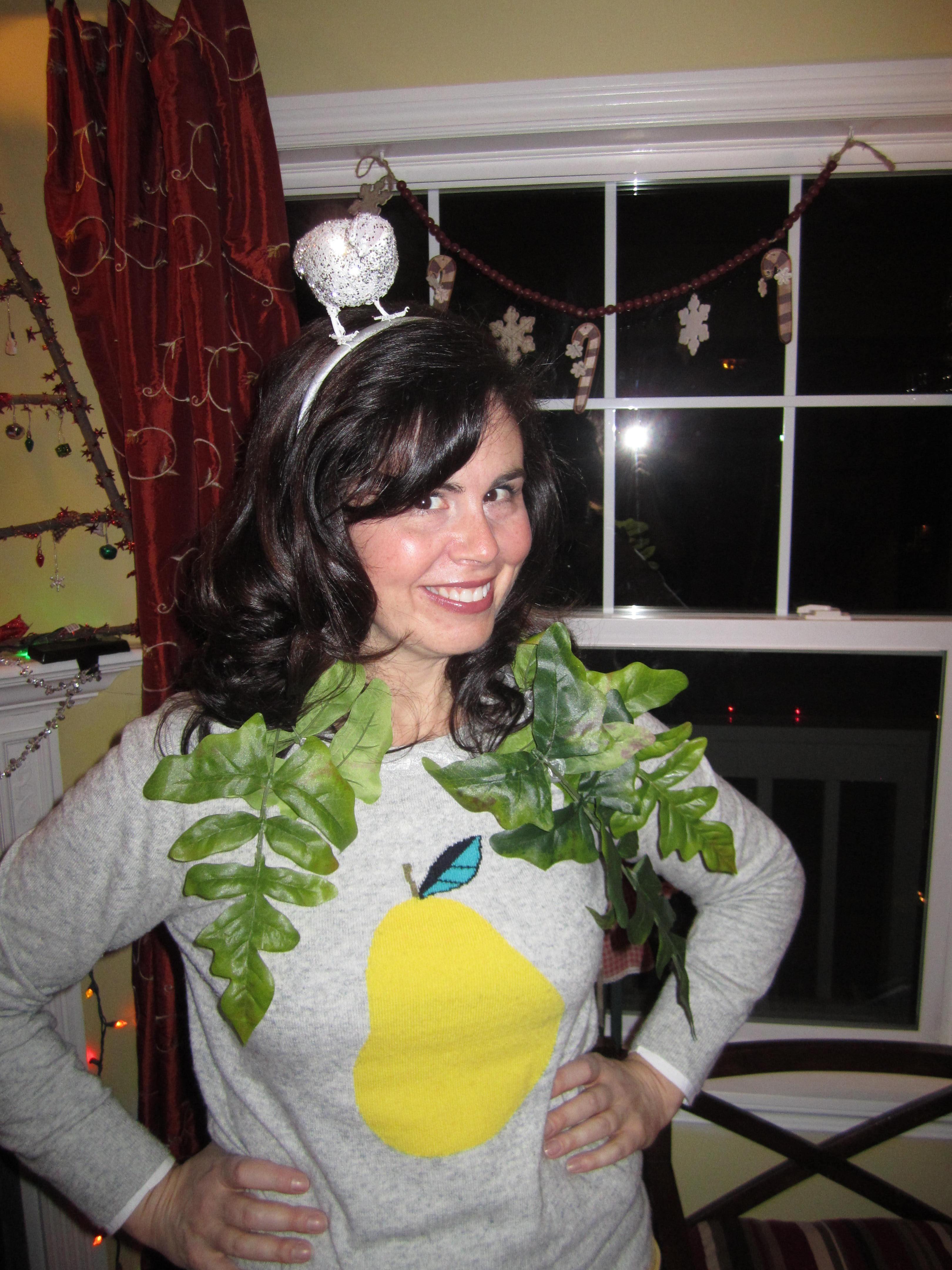 Partridge Pear Tree Costume