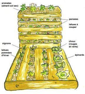 """""""potager palette"""": fabriqué avec des palettes, des clous, du grillage, des cailloux, de la terre et du compost, il permet de cultiver des légumes dans un espace réduit sans besoin de réaménager le terrain."""