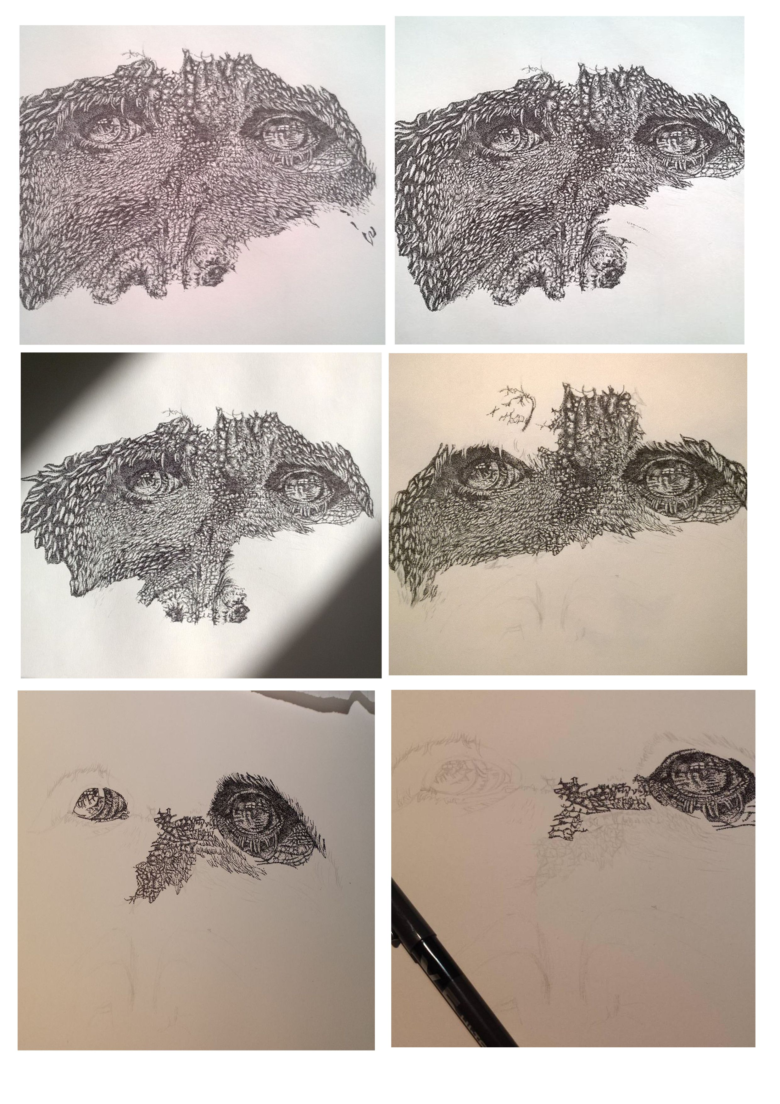 Stages 1 to 6 of my pointillism work Stage 7 in progress