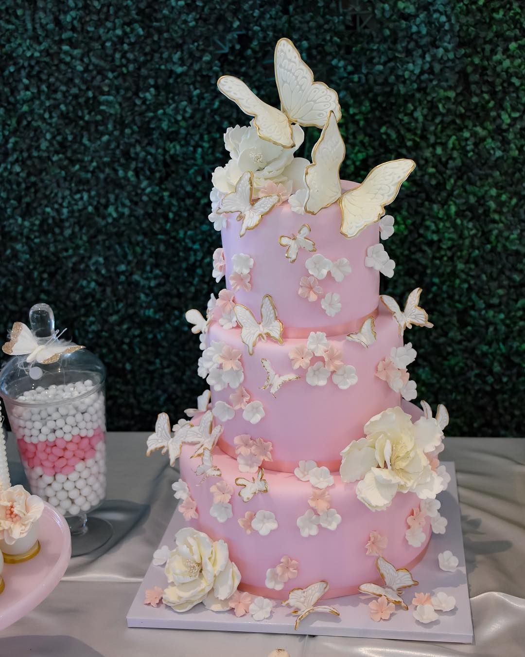 Close Up Of This Beautiful Butterfly Themed Cake Cake
