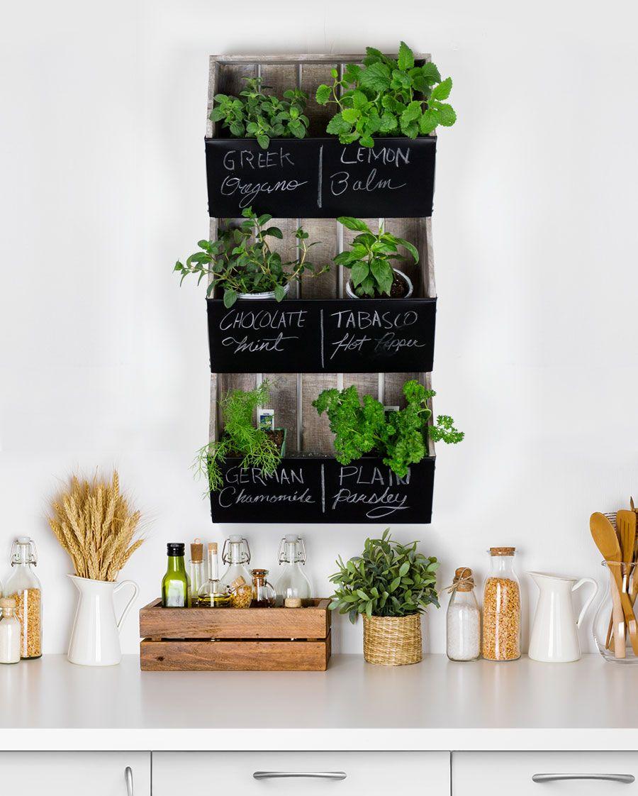 Diy Farmhouse Kitchen Herb Garden And Charming Storage Ideas Herb Garden In Kitchen Kitchen Herbs Indoor Herb Garden