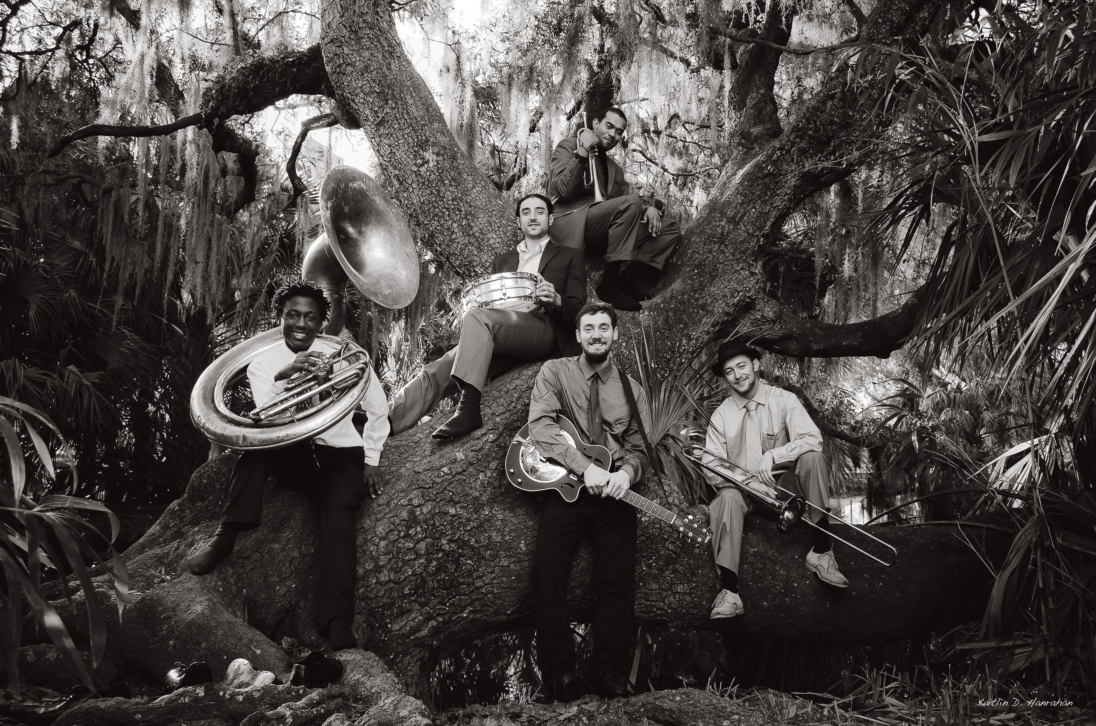 New Orleans Swamp Donkeys Photo Kaitlin Hanrahan Swamp New Orleans Photo
