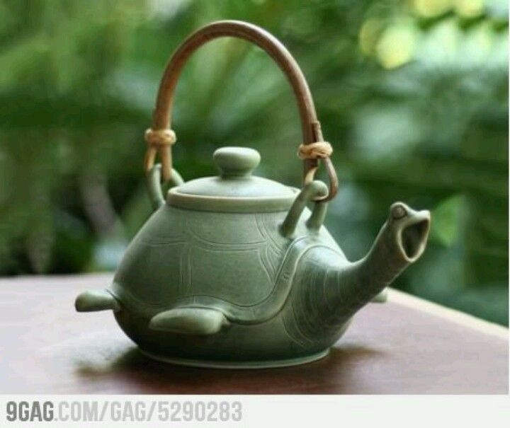@Cali Redman! Turtle Tea Kettle.