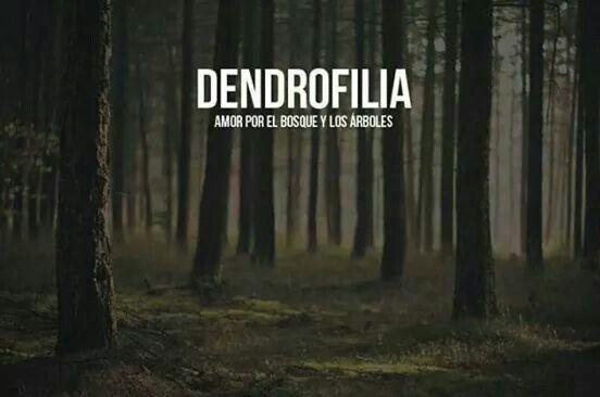 Dendrofilia