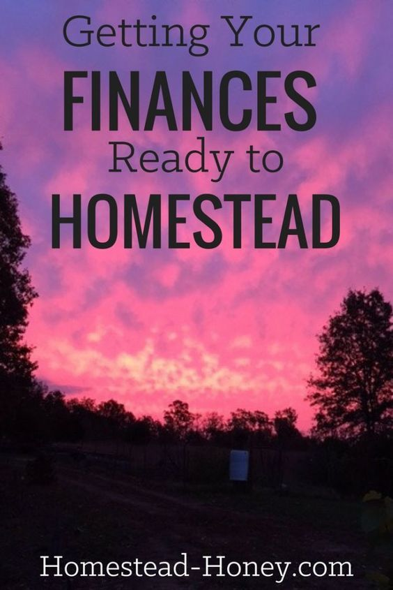 Do you dream of owning land and homesteading but aren't sure if you can afford it? Ariana from Truth Peace Love shares her top tips for getting your finances ready to homestead. | Homestead Honey
