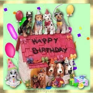 DOGGY BIRTHDAY