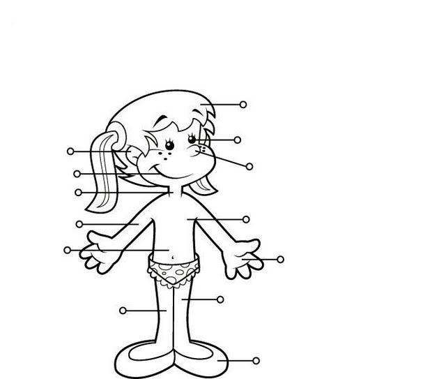 Nina Fichas Infantiles Del Cuerpo Humano Para Imprimir Gratis Para Ninos Cuerpo Humano Para Ninos El Cuerpo Humano Infantil Unidad Del Cuerpo Humano