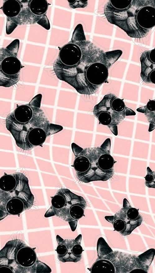 Trippy Cat Themed Phone Wallpaper Hipster Wallpaper Trippy Cat Cat Wallpaper