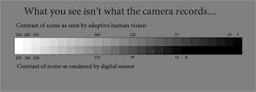Image result for histogram chart for camera