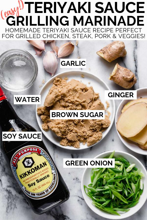 Easy Homemade Teriyaki Sauce Recipe 6 Simple Ingredients Recipe In 2020 Easy Teriyaki Sauce Recipe Teriyaki Sauce Recipe Sauce Recipes