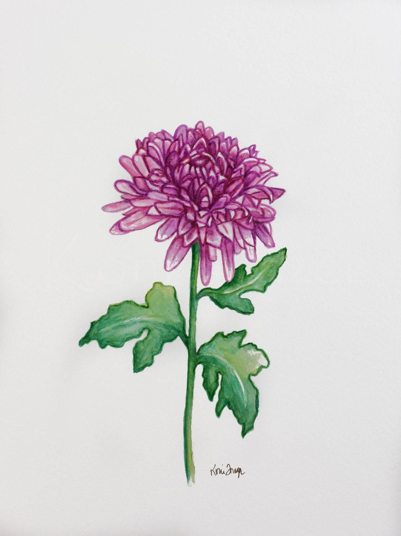 Chrysanthemum November Birthday Flower Original Watercolor Painting Birth Originalsleevetattoos Birth Month Flowers Month Flowers Birth Flower Tattoos