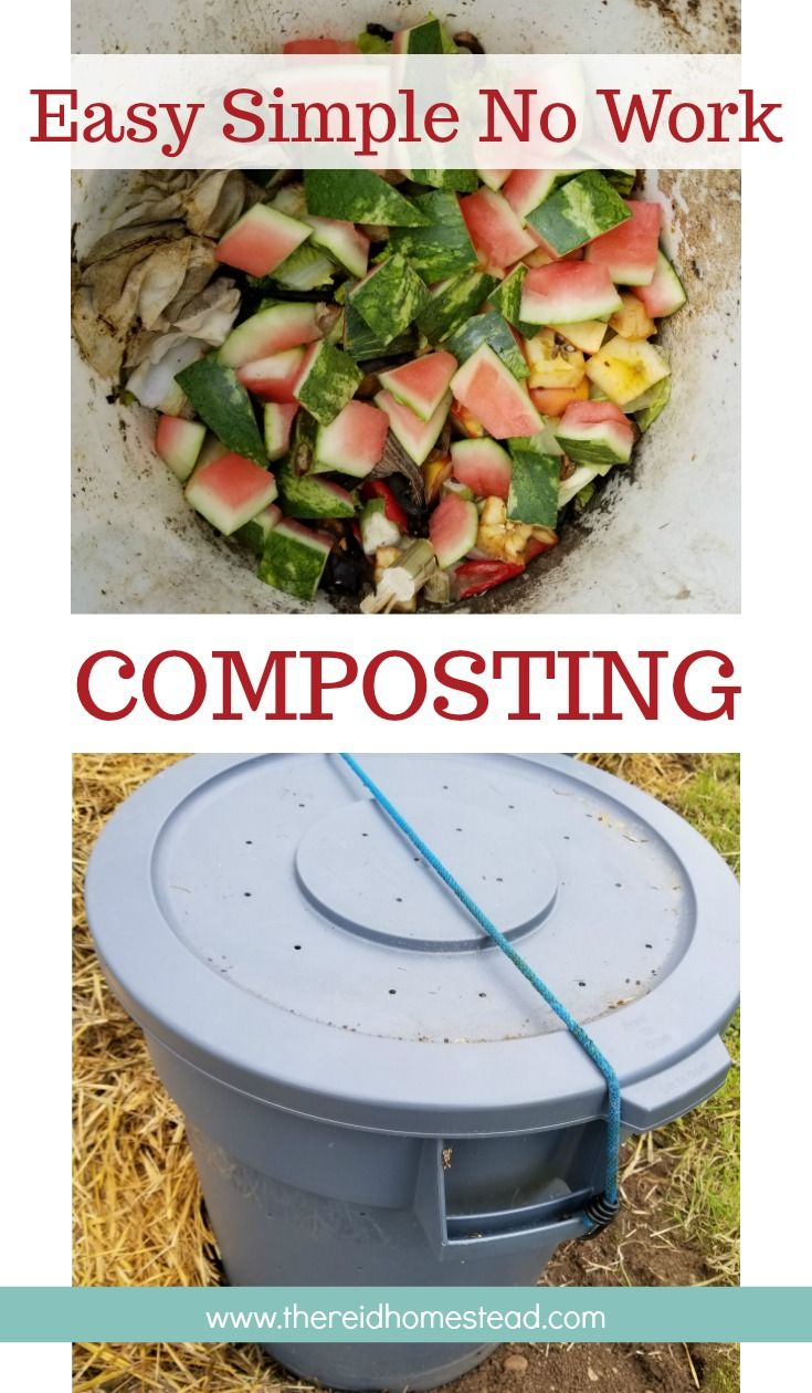 Simple Easy No Work DIY Composting (step by step instructions!) is part of Garden compost, Diy garden projects, Organic gardening tips, Organic vegetable garden, Compost, Easy garden - Simple Easy No Work DIY Composting! Here is a beginners guide to simple easy composting that includes a DIY Compost Bin and easy to follow tutorial