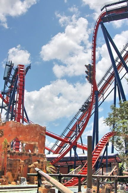 SheiKra, Busch Gardens, Tampa, FL. Longest Vertical Drop In The World.