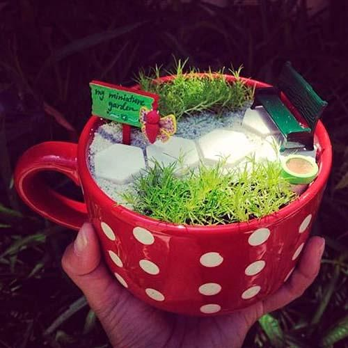 mini-jardines-en-tazas-3 paisajismo Pinterest Miniature
