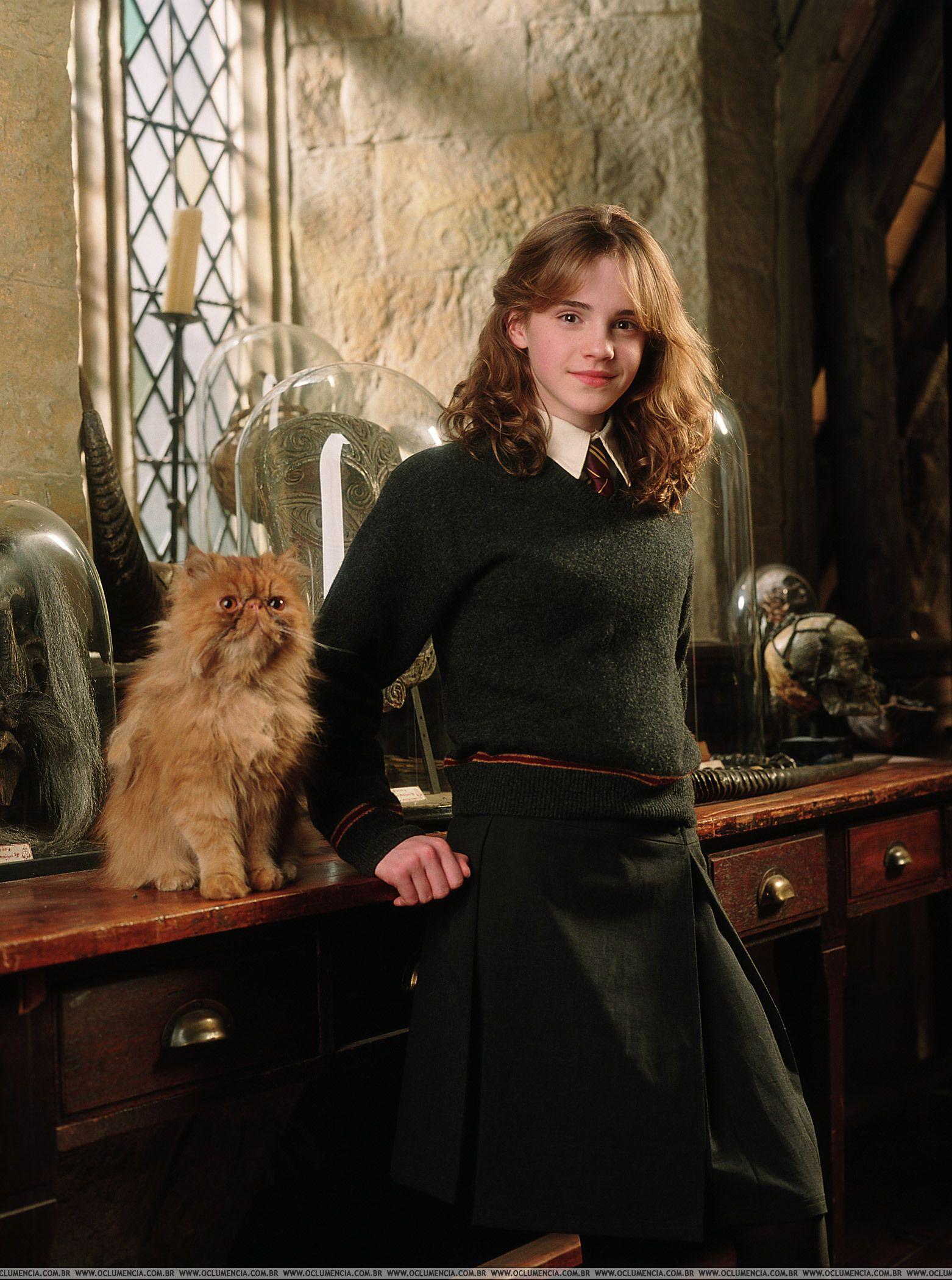 Crookshanks Emma Watson Harry Potter Harry Potter Film Harry Potter Images