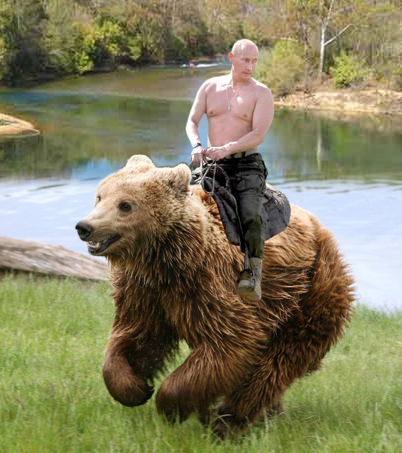 You Can Now Buy An Action Figure Of Vladimir Putin Riding A Bear Thedailywh At Https Www Goodnews4youonline Com Index Vladimir Putin Funny Pictures Putin