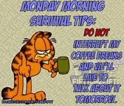 Image Result For Garfield Good Morning Wishes Monday Coffee Monday Humor Coffee Humor