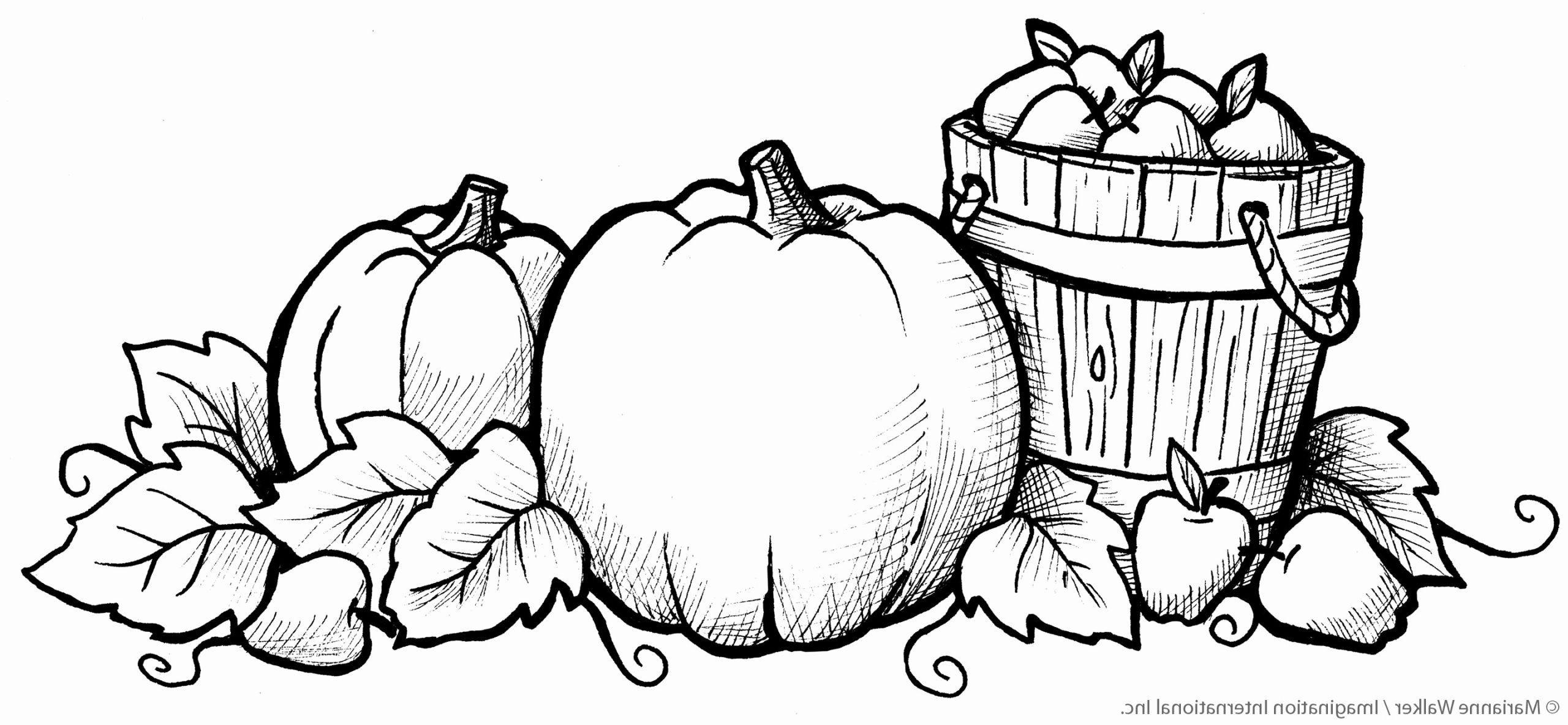 Anime Coloring Food Luxury 29 Luxury Stock Scarecrows