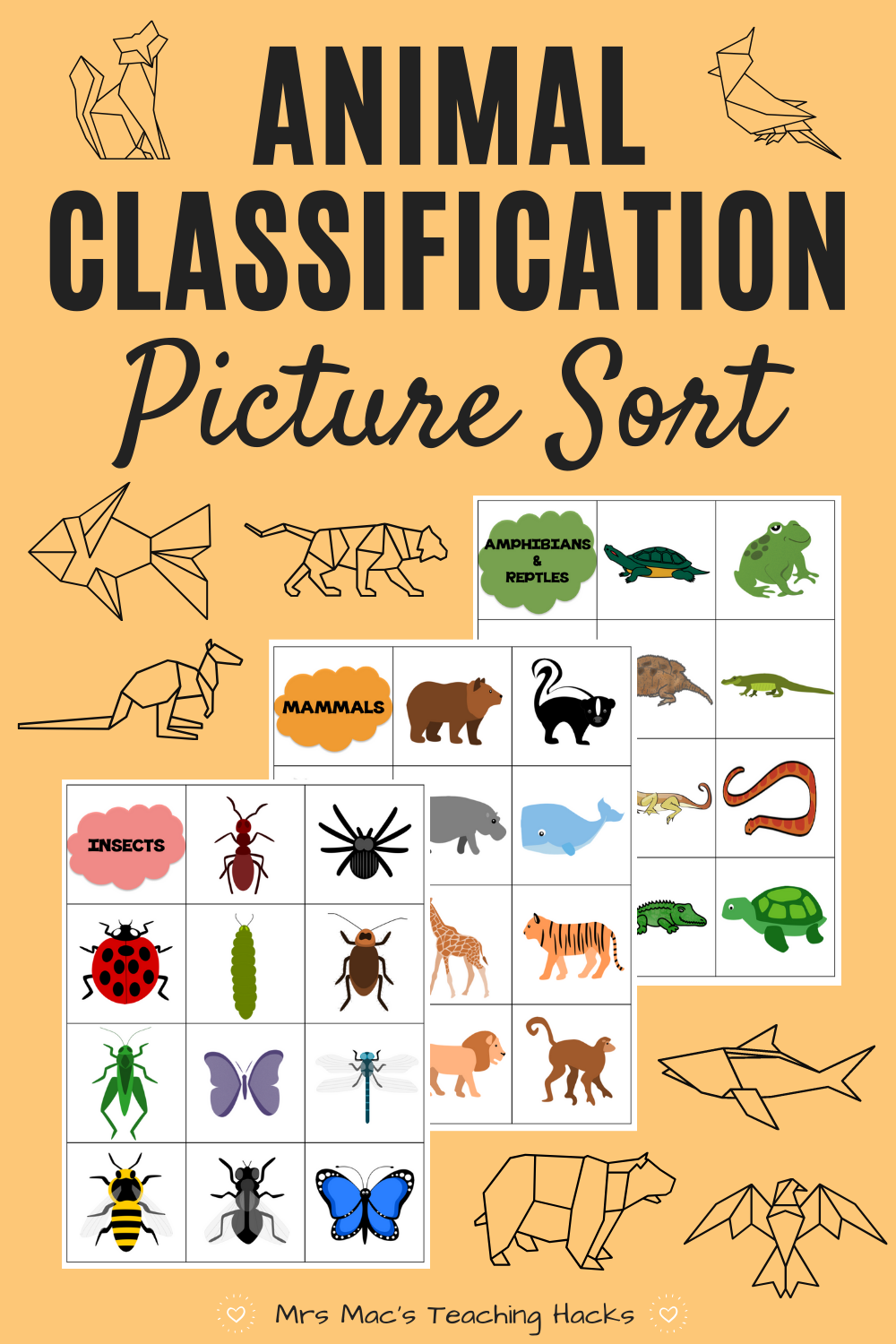 Animal Classification Picture Sort | Animal classification, Picture sorts, Animal  categories
