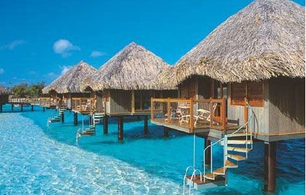 We were married here (bora bora)!! The huts have glass floors so you can see the aquatic life :) super nice!!