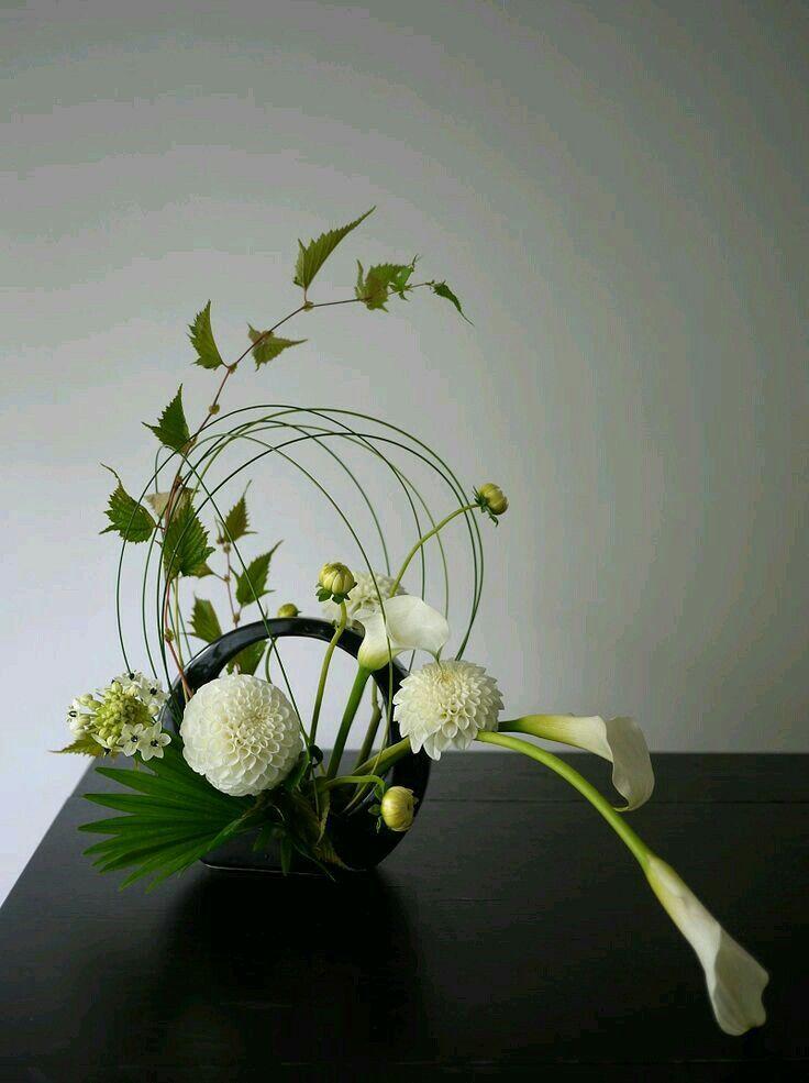 Espacio Negativo Gardening Pinterest Floraldiseño