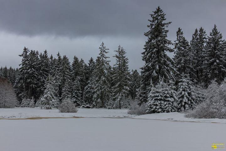 Winter Kann So Schön Sein Guten Morgen Ich Wünsche Euch