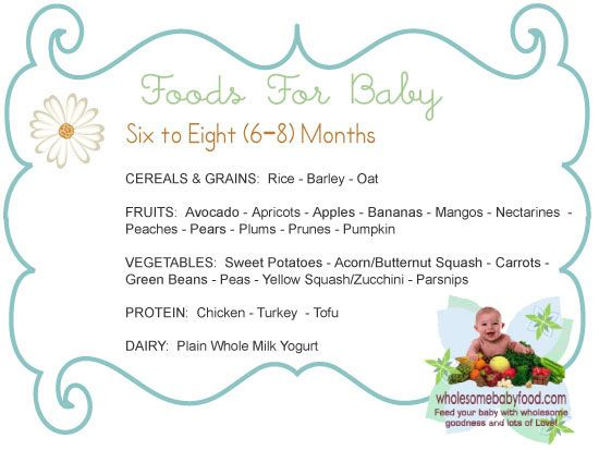 Introducing Solids To Your 6 Month 8 Old Baby