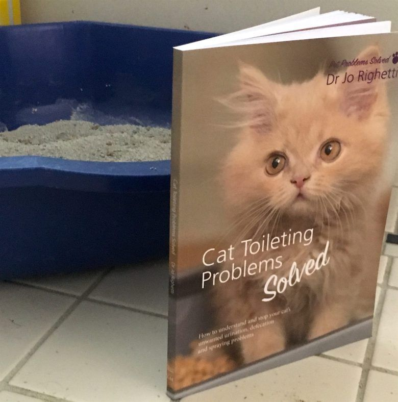 Cats use of litter box determined by sight, not scent - Dr Jo's Blog
