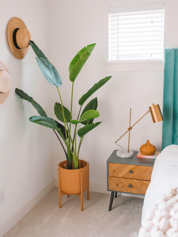 Pin On Home Decor Ideas #tree #living #room #decor