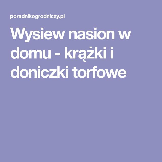 Wysiew Nasion W Domu Krążki I Doniczki Torfowe Porady