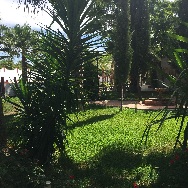 Jardin Arabe: Jardines Salón Árabe #Haciendaazahares #Haciendas #Bodas