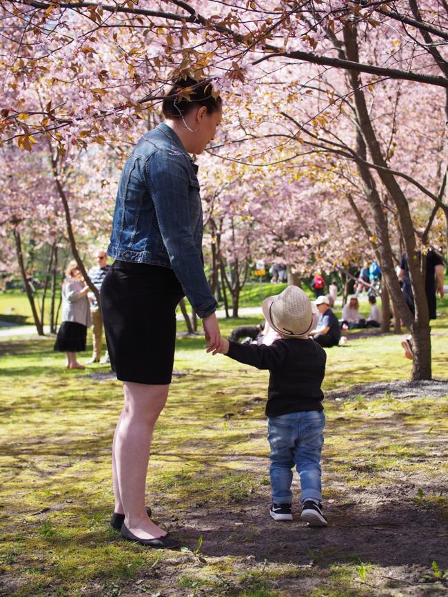 Kuistin kautta: Kirsikkapuistossa äitienpäivänä