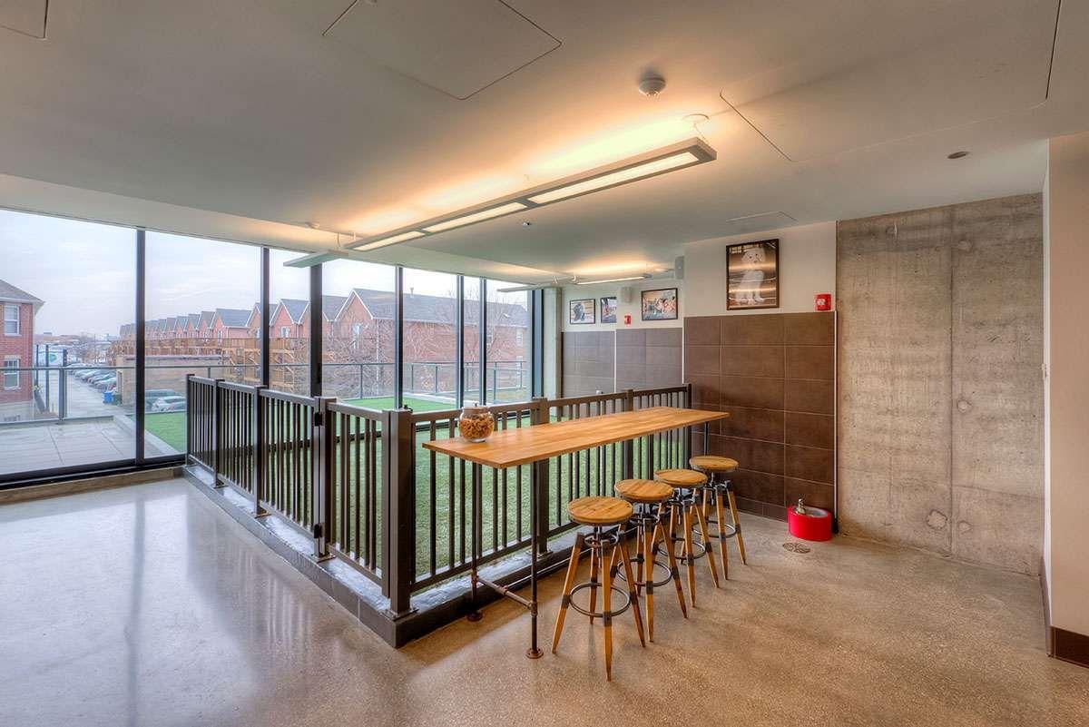 Xavier (Chicago, IL) Dog Park Modern apartment