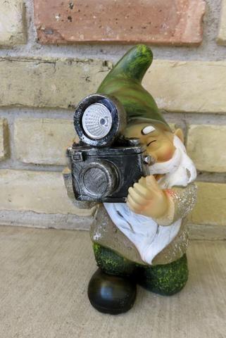 Solar Garden Gnome Taking Pictures.