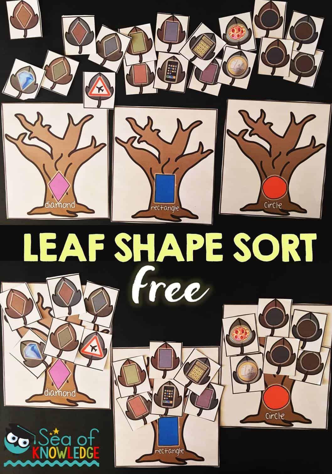 Leaf Shape Sorting Activity Free Iteach K 2 Linky